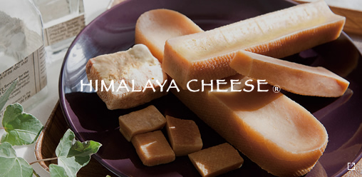 HIMALAYA CHEESE