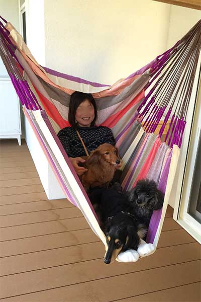 ロアジス スタッフと犬たち